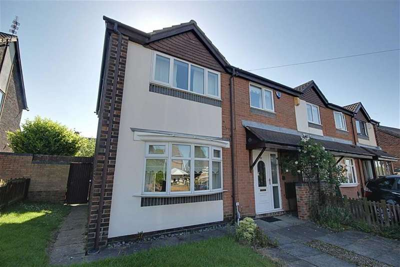3 Bedrooms Terraced House for sale in Brisbane Street, Town End Farm, Sunderland