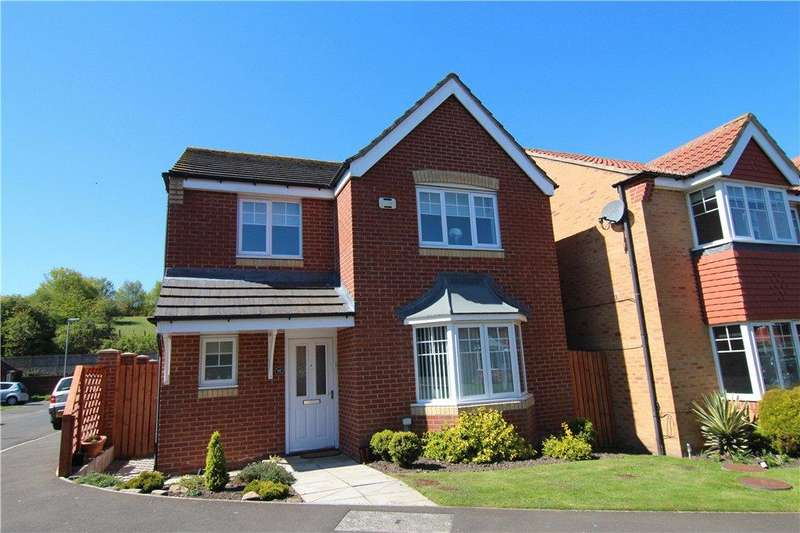 4 Bedrooms Detached House for sale in St Cuthberts Meadow, Sacriston, Durham, DH7