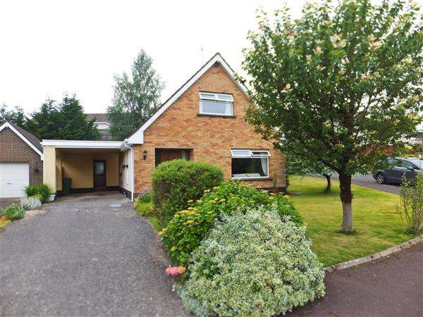 3 Bedrooms Detached House for sale in 26 Drummurry Gardens
