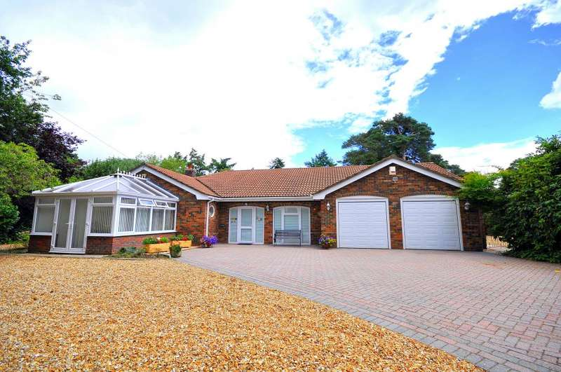 3 Bedrooms Detached Bungalow for sale in St Leonards, Ringwood, BH24 2QQ