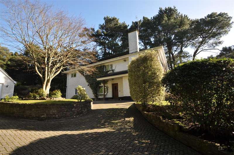 5 Bedrooms Detached House for rent in Branksome Park