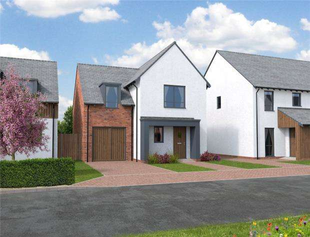 3 Bedrooms Detached House for sale in Orchard View, Kingfisher Rise, Newton St Cyres