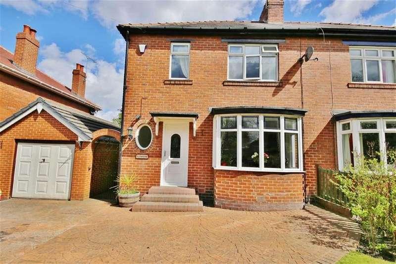 3 Bedrooms Semi Detached House for sale in Hylton Bank, South Hylton, Sunderland, SR4