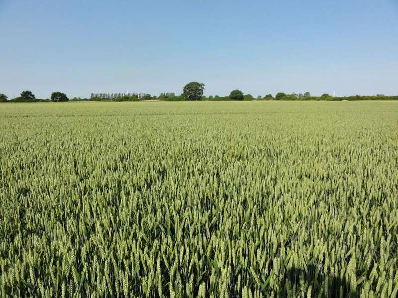 Land Commercial for sale in Johnson's Farm, Spaldington, Near Howden, East Yorkshire