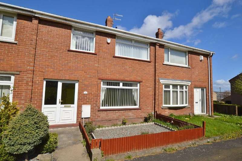3 Bedrooms Terraced House for sale in Briar Close, Winlaton