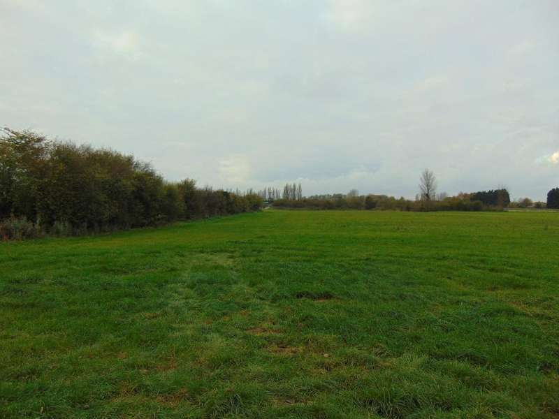 Equestrian Facility Character Property for sale in Off Of Pius Drove, Upwell, Wisbech, Cambs, PE14 9AL