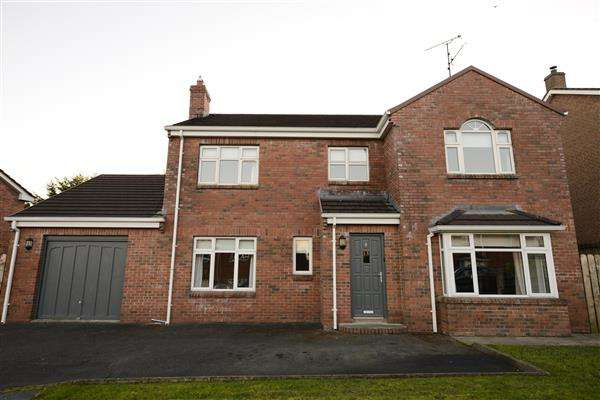4 Bedrooms Detached House for sale in 4 Scaffog Avenue