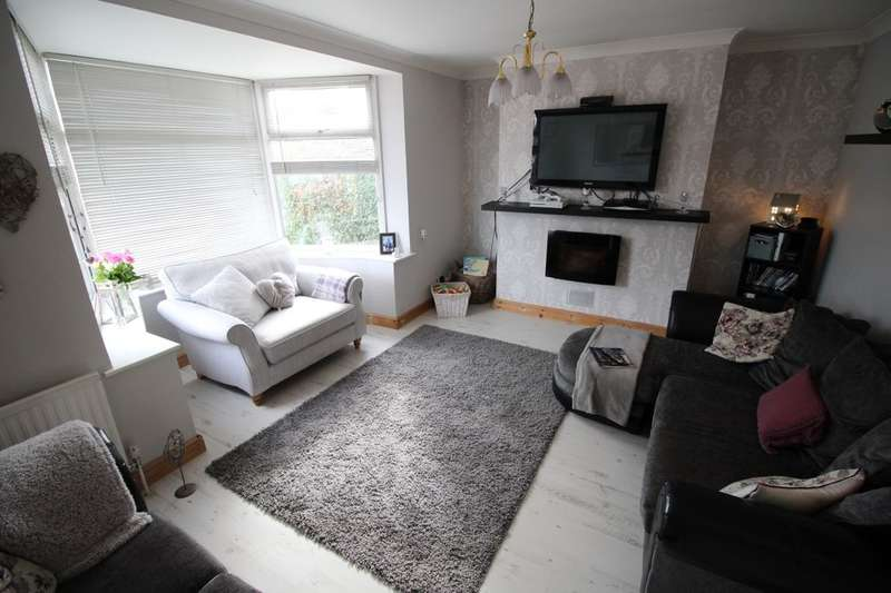 3 Bedrooms Semi Detached House for sale in Welfare Road, Woodlands, Doncaster, DN6
