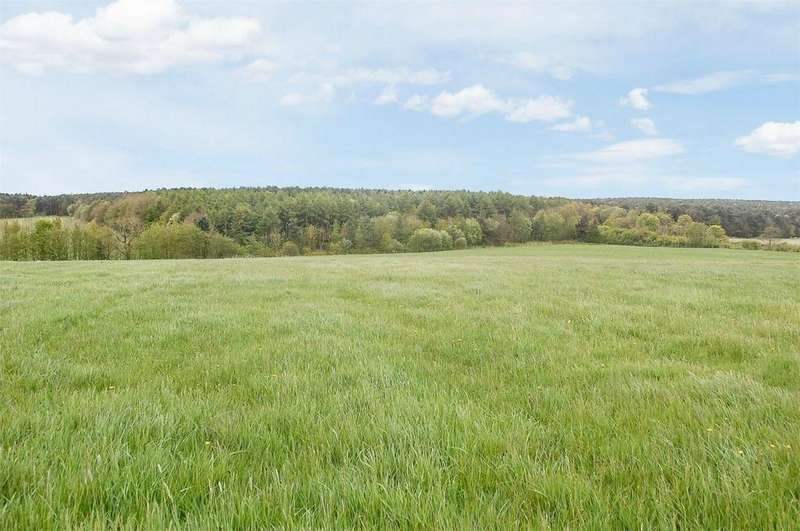 Farm Land Commercial for sale in Wingate, Wingate, County Durham
