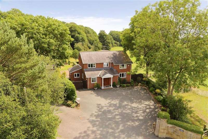 3 Bedrooms Detached House for sale in Birch Road, Ellesmere, SY12