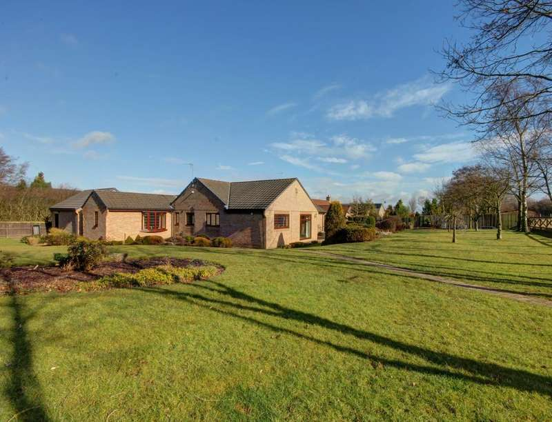 4 Bedrooms Detached Bungalow for sale in Willow Park, Langley Park, Durham, DH7