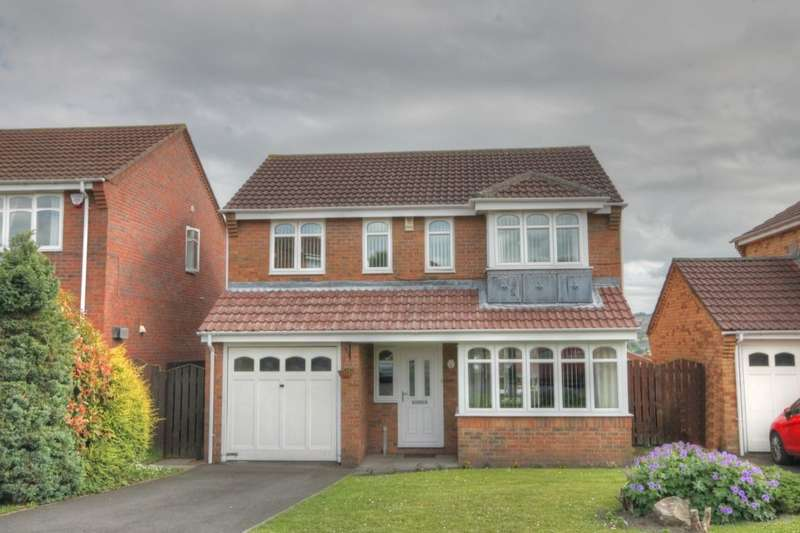 3 Bedrooms Detached House for sale in Ottershaw, Dumpling Hall, Newcastle Upon Tyne, NE15
