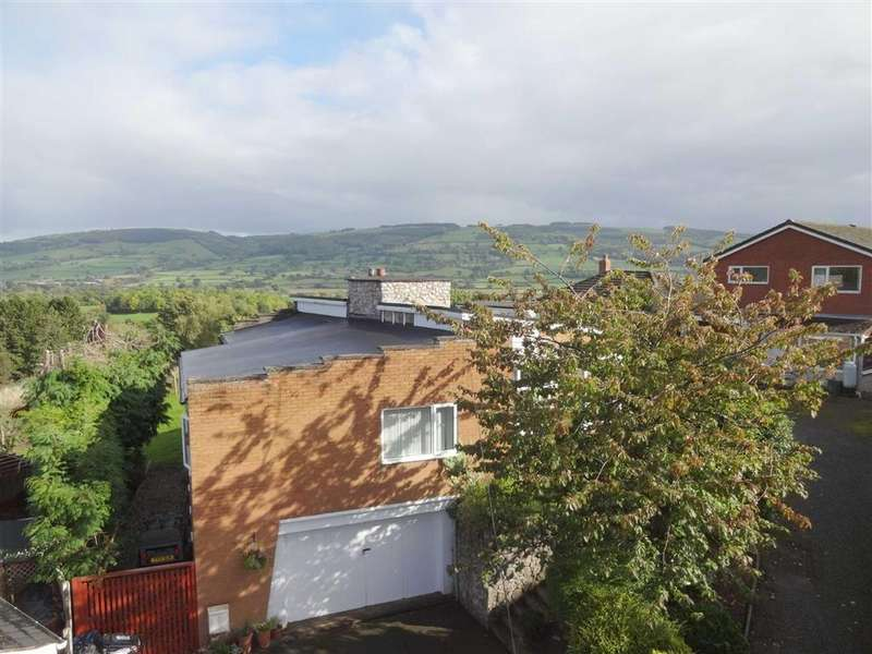 4 Bedrooms Detached Bungalow for sale in Annegra, Borfa Green, Welshpool, Powys, SY21