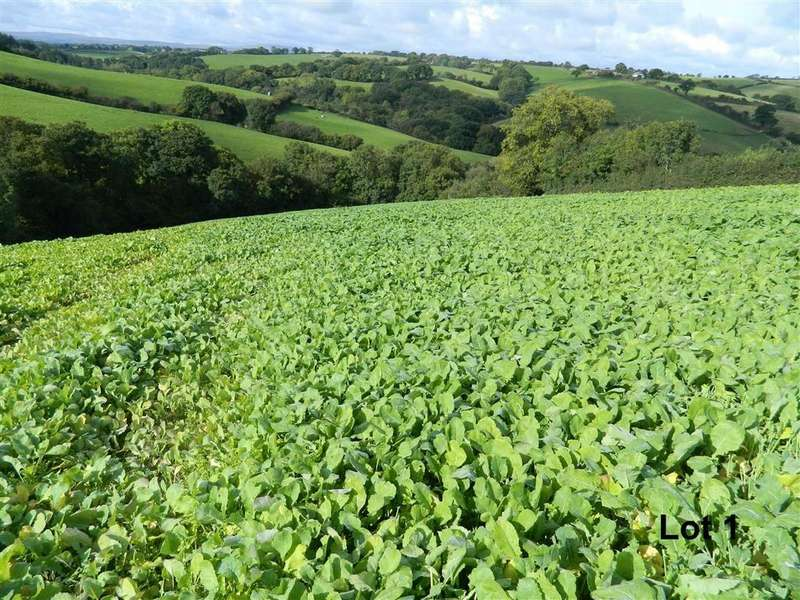 Land Commercial for sale in Cheriton Bishop, Exeter, Devon, EX6
