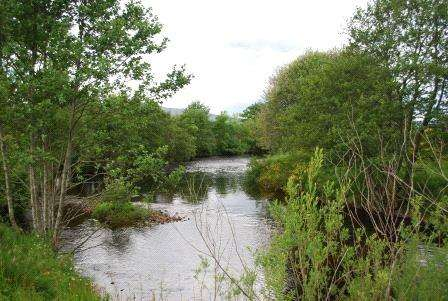 Land Commercial for sale in The Haugh Beat, River Feugh, Banchory, Aberdeenshire, AB31