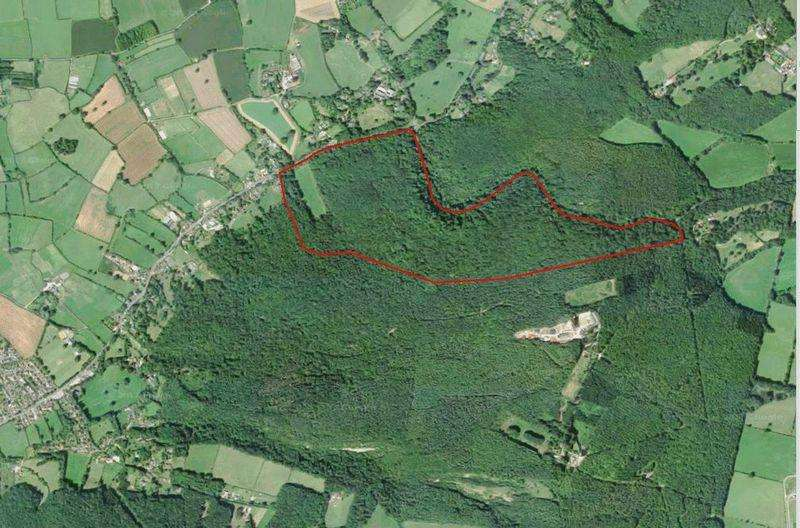 Farm Land Commercial for sale in 146 Acres Woodland at Brockley Combe, North Somerset BS48 3DF