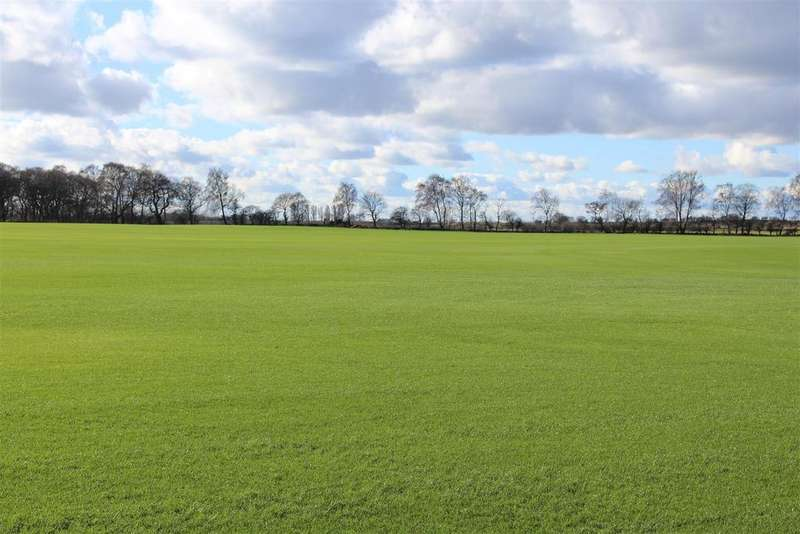 Land Commercial for sale in Cliffe Lane, Holme-on-Spalding-Moor
