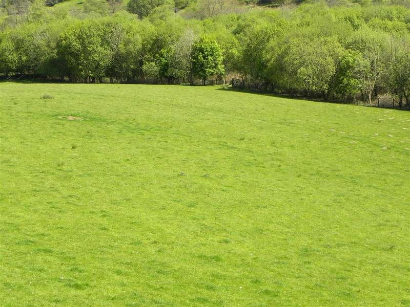 Farm Land Commercial for sale in Part of Hafodymaidd, Pumpsaint, Llanwrda