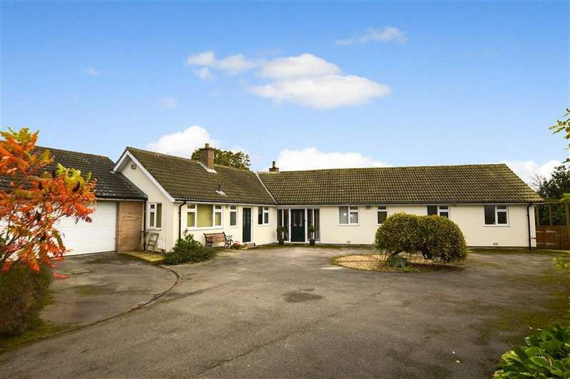 4 Bedrooms Detached Bungalow for sale in Main Street, Brandesburton, East Yorkshire