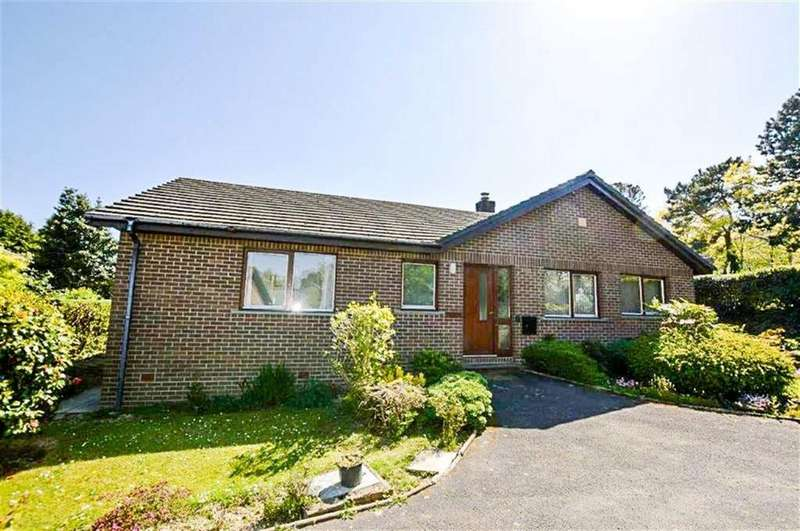 3 Bedrooms Detached Bungalow for rent in Penrhiw, Cefnllan Road, Cefnllan Road, Aberystwtyth, Ceredigion, SY23