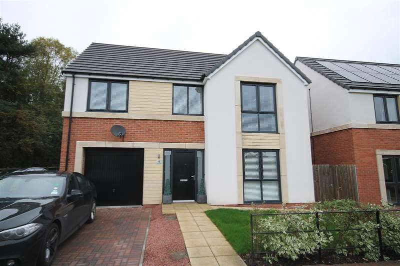 4 Bedrooms Detached House for sale in Woodridge, Langley Moor, Durham