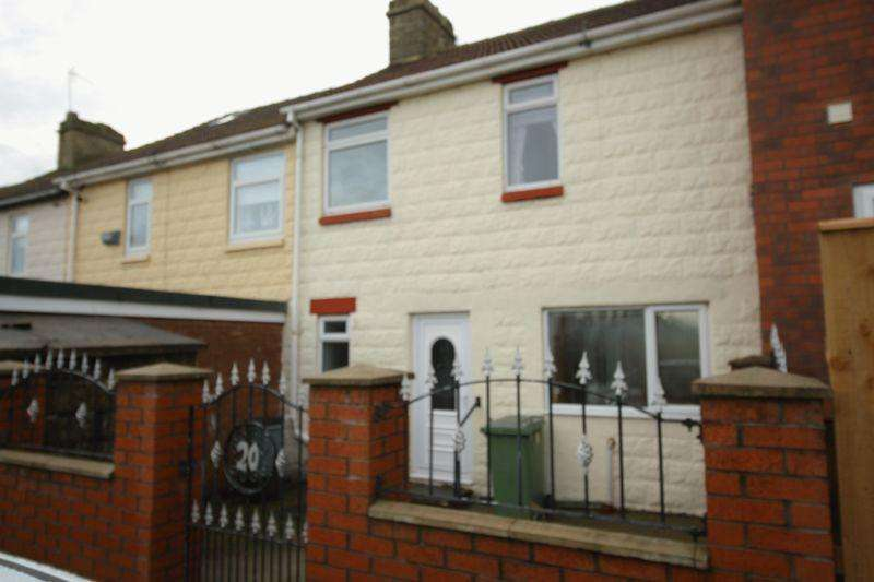 3 Bedrooms Terraced House for sale in 3 Bedroom Mid Terraced Home on Newcastle Avenue, Horden, Peterlee