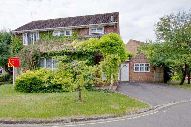 4 Bedrooms Detached House for sale in Sainsbury Close, Andover