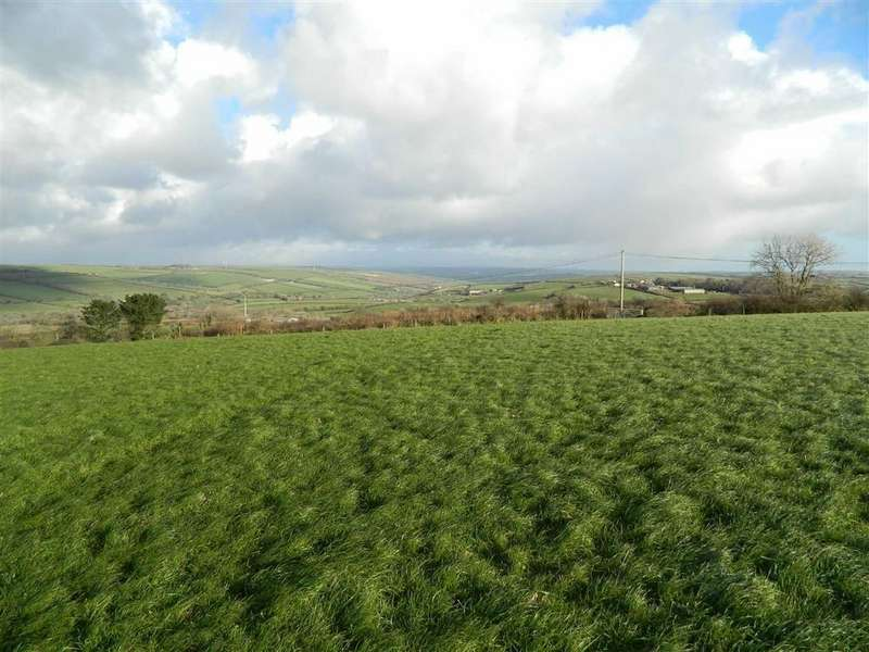 Land Commercial for sale in St Wenn, Bodmin, Cornwall, PL30
