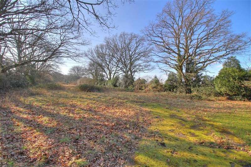 Land Commercial for sale in Misselbrook Lane, Parish Of Chilworth, Hampshire
