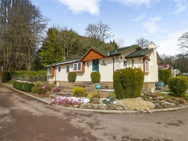3 Bedrooms Detached Bungalow for sale in Clanna, Alvington, Lydney, Gloucestershire