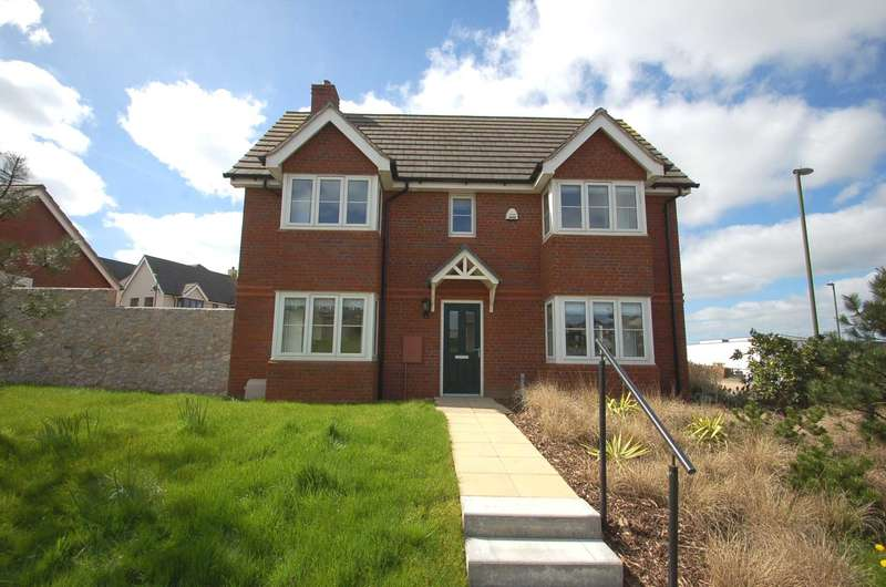 3 Bedrooms Detached House for sale in Mimosa Way, Paignton