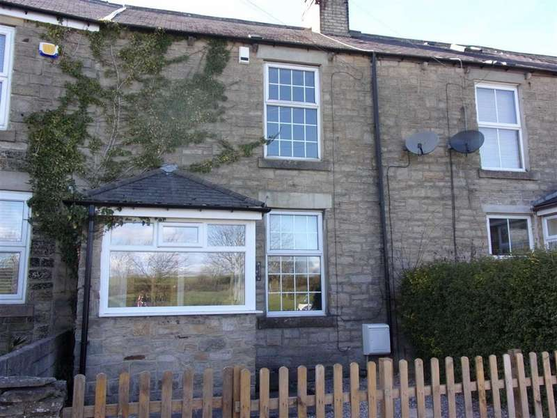 2 Bedrooms Terraced House for sale in Silvertop Terrace, Greenside, Tyne Wear
