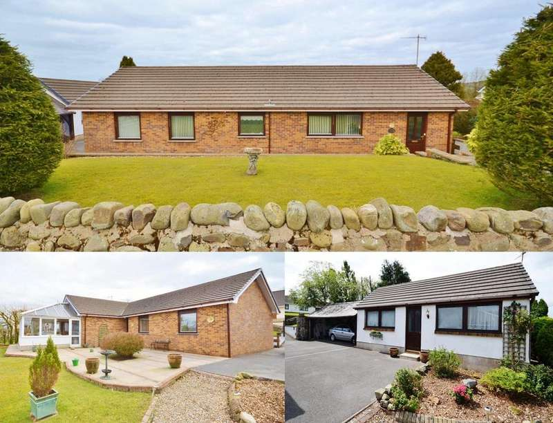 3 Bedrooms Detached Bungalow for sale in Rhydargaeau, Carmarthen