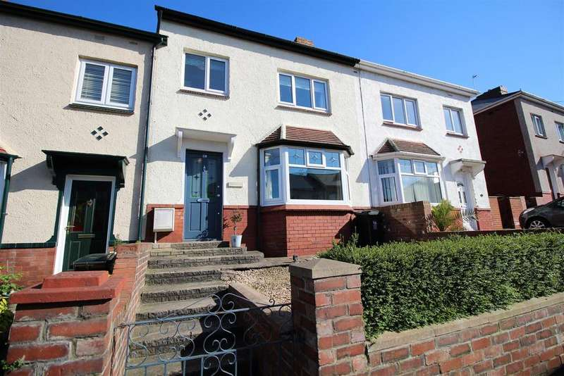 3 Bedrooms Terraced House for sale in Denbigh Road, Newport