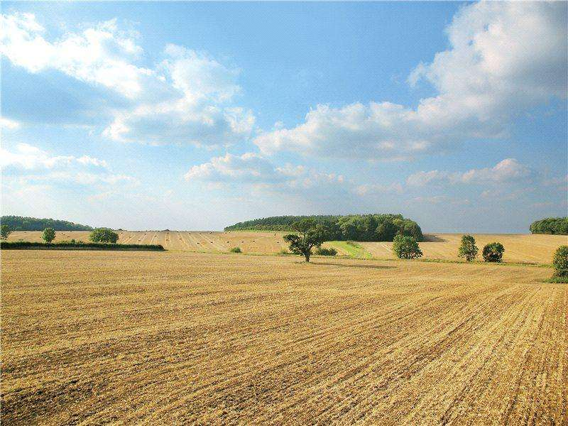 7 Bedrooms Land Commercial for sale in Weston Green, Cambridgeshire, CB21