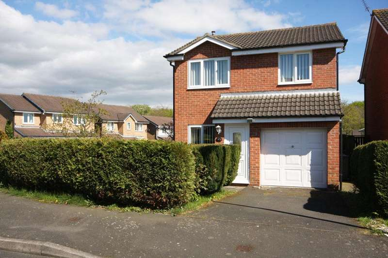 3 Bedrooms Detached House for sale in Chillingham Drive, Deneside View, Chester-le-Street DH2 3TJ