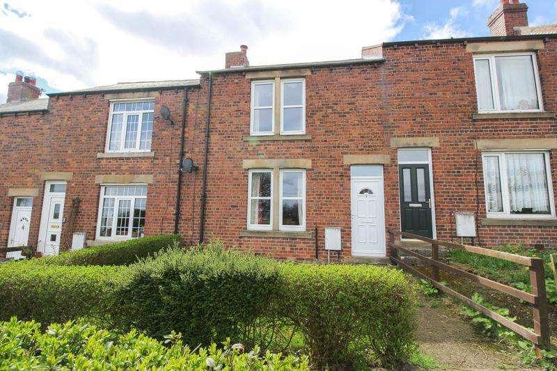 3 Bedrooms Terraced House for rent in Vera Street, Greenside
