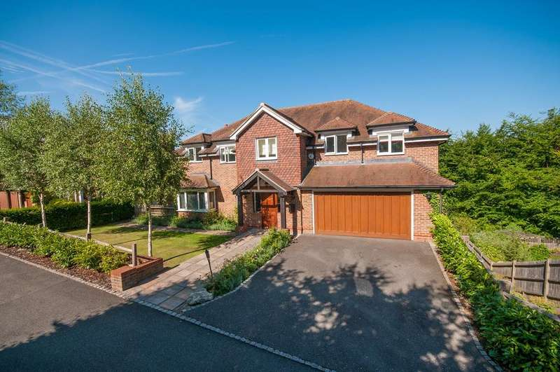 5 Bedrooms Detached House for sale in Hazelwood Lane, Chipstead, CR5
