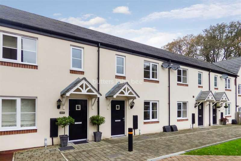 3 Bedrooms Terraced House for sale in Bath Vale