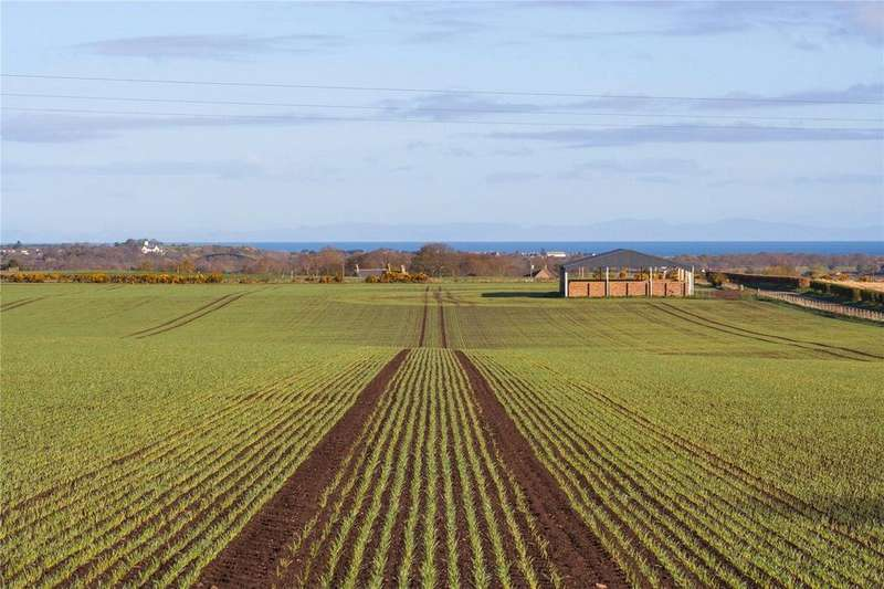 4 Bedrooms Farm Commercial for sale in Whole - Auchenhalrig Farm, Auchenhalrig, Fochabers, Moray, IV32
