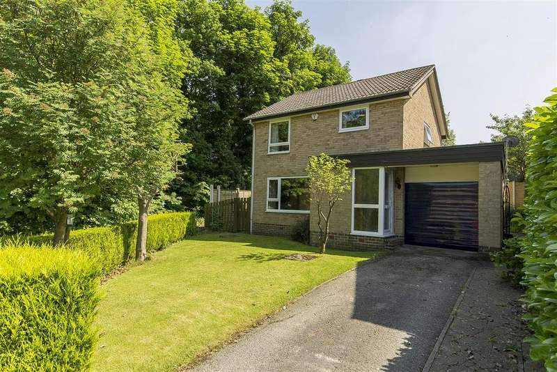 4 Bedrooms Detached House for sale in Redgrove Way, Walton, Chesterfield