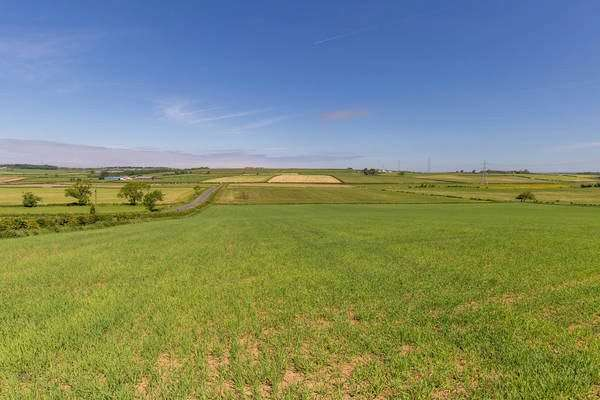 Land Commercial for sale in East Doura Farm - Lot 3, Craigie, Kilmarnock, South Ayrshire, KA1