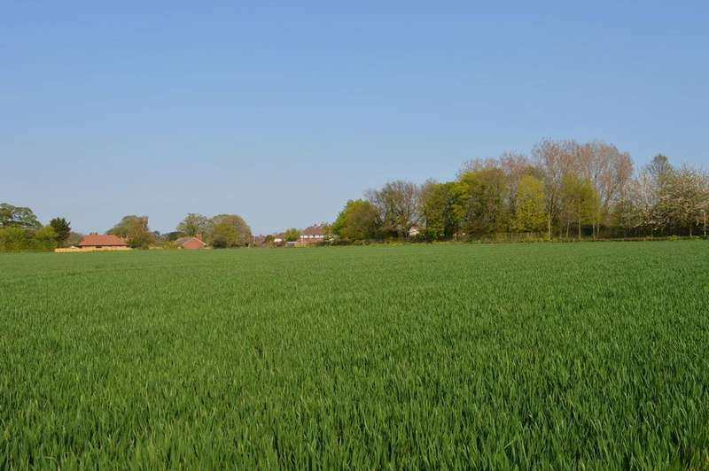 Land Commercial for sale in Eastry, CT13