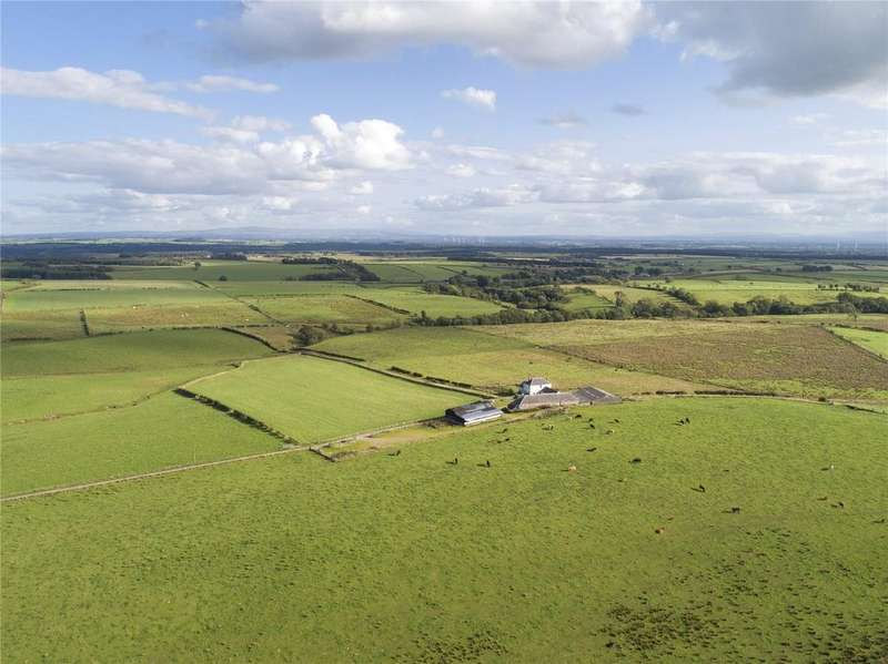 Farm Commercial for sale in The Evertown Portfolio - Lot 11, Chapelhills Farm, Canonbie, Dumfriesshire, DG14