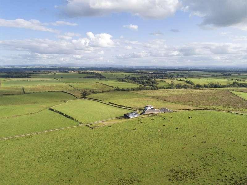 Farm Commercial for sale in The Evertown Portfolio - Lot 11, Chapelhills Farm, Canonbie, Dumfriesshire, DG14