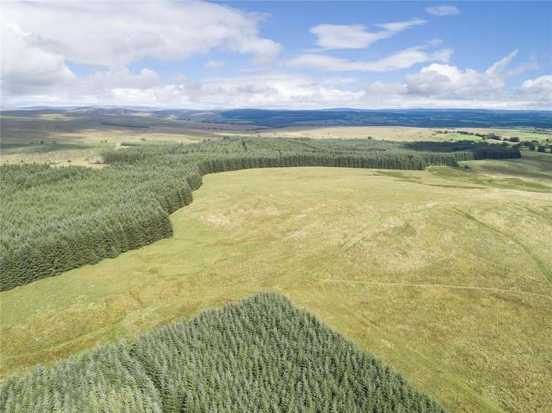 Farm Commercial for sale in The Evertown Portfolio - Lot 9, Outer Hill Forestry, Canonbie, Dumfriesshire, DG14