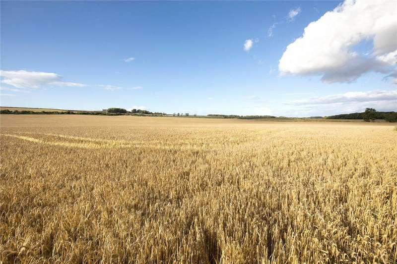Land Commercial for sale in Abbey Mill Farm (Land), Haddington, East Lothian, EH41