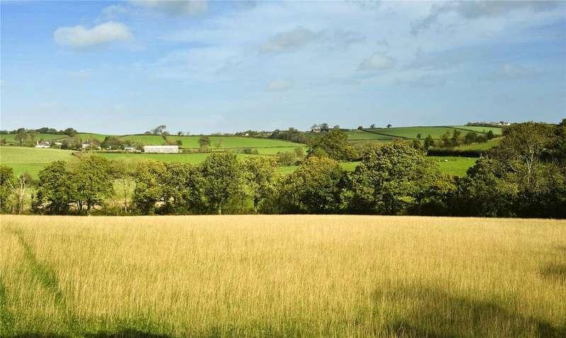 Land Commercial for sale in Lot 3 - Shobrooke Farm, Morchard Road, Crediton, Devon, EX17