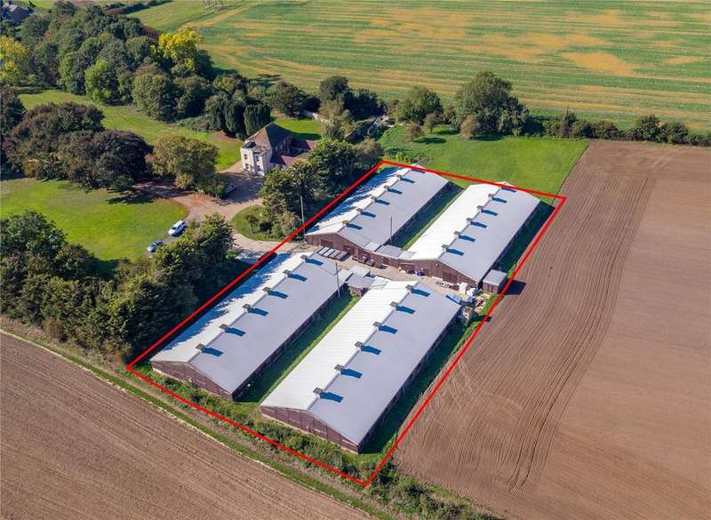 Land Commercial for sale in Former Poultry Unit, Stambridge Road, Little Stanbridge, Rochford, Essex, SS4