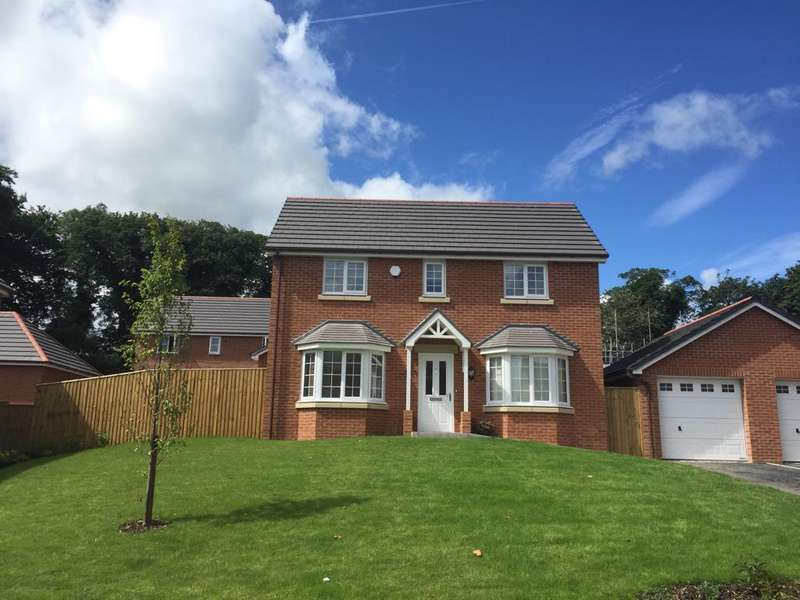 3 Bedrooms Detached House for sale in The Brenig, Pont Adam, Ruabon